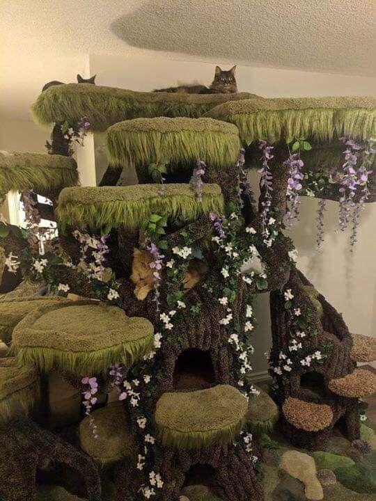 Great cat deco idea Cat tree house, Cat perch