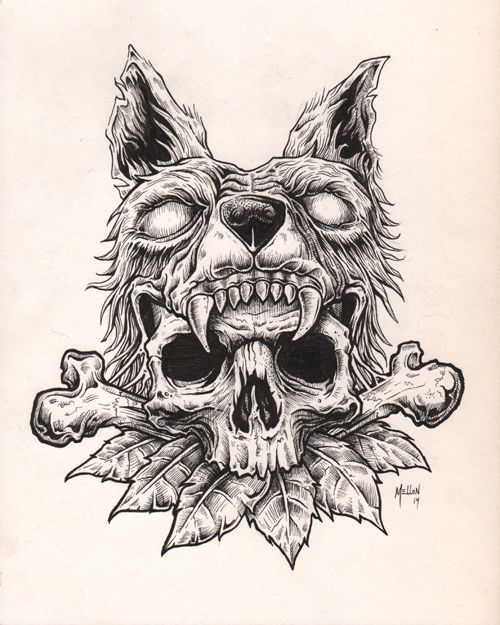 wolf skull illustration - Google Search | illustration ...
