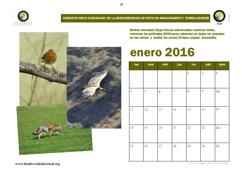 Calendario 2016 Biodiversidad Hoyo de Manzanares