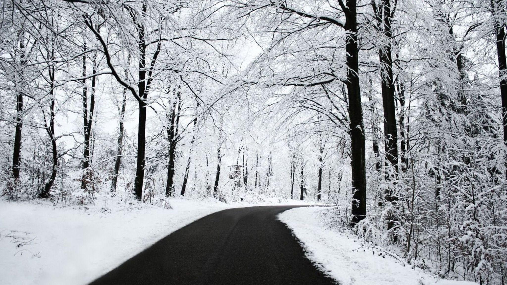 Nature White Nature 2048x1152 169 Fond Ecran Hiver