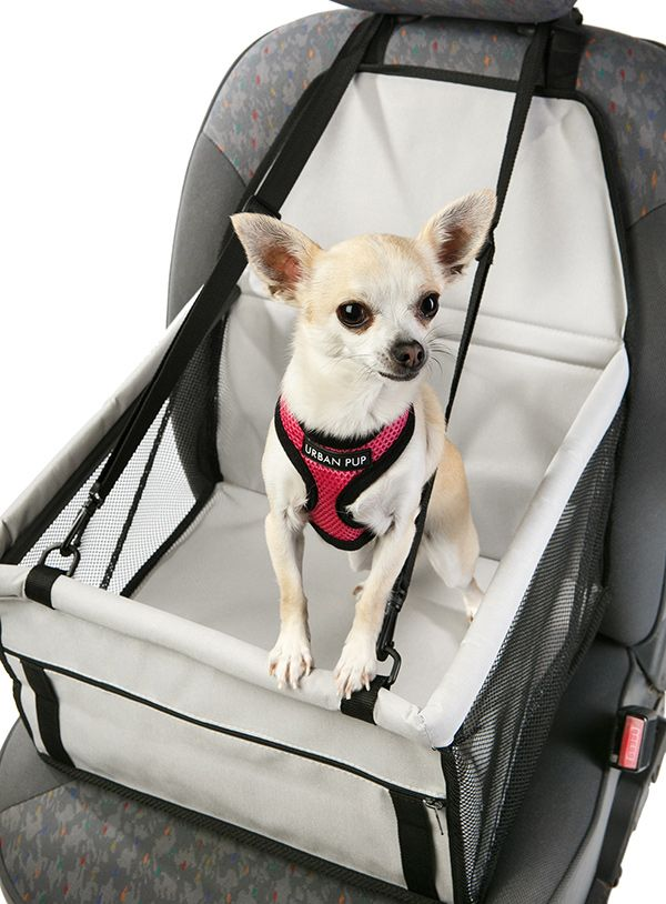 Car Seat Dog Cradle | dog clothes & items