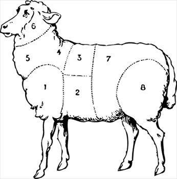 Free Butcher Diagram Butcher Diagram Sheep Sheep Drawing