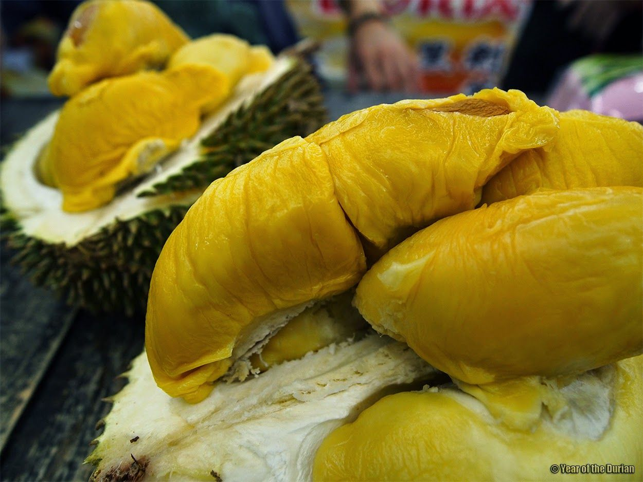 How to pick and eat durian fruit the washington post - Year Of The Durian Eat All You Can Durian Buffet In Penang