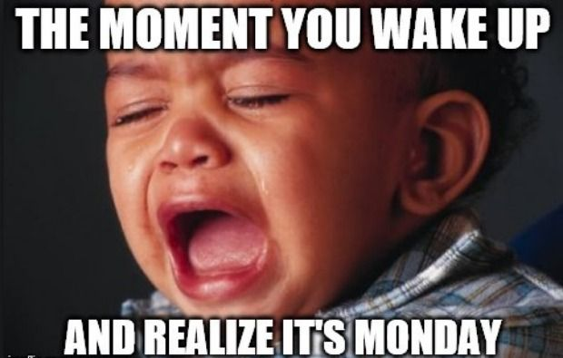 12 Monday Memes To Help You Feel Less Alone On The Worst Day Of The Week Funny Monday Memes Monday Memes Monday Humor