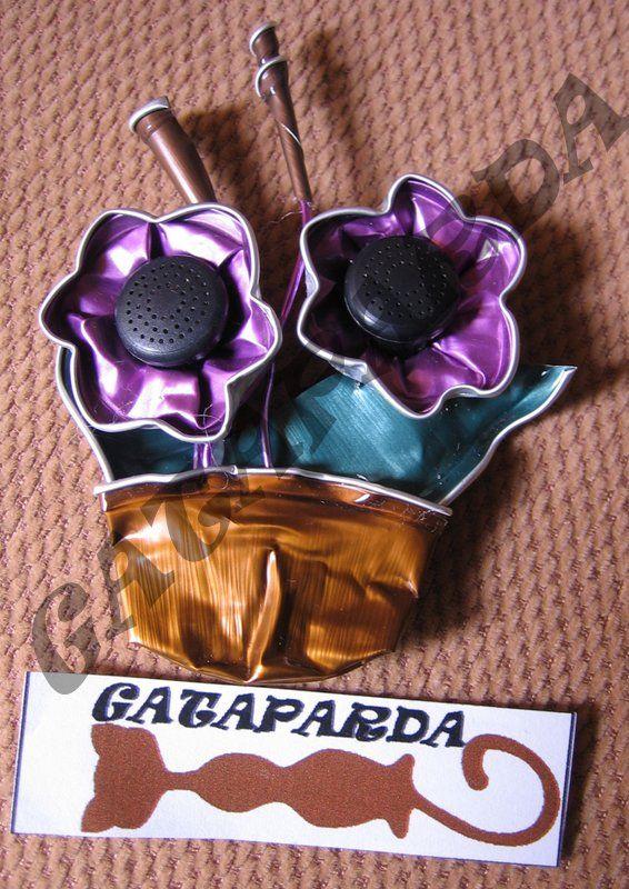 Broches de Gataparda