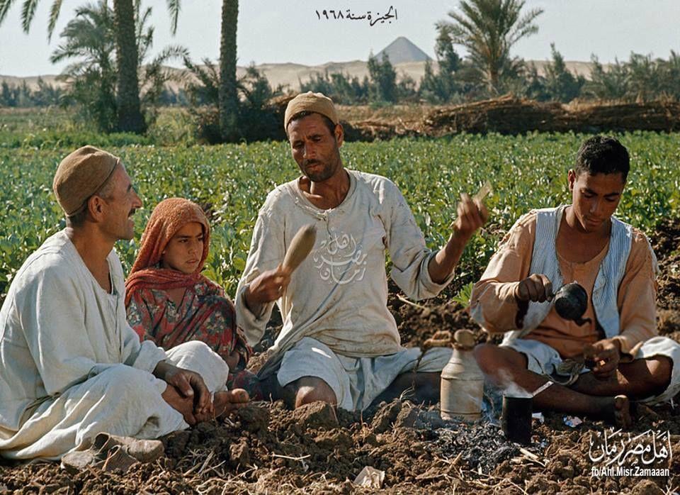 كوباية شاي علي نار الركية في الغيط :)  الجيزة سنة 1968 .
