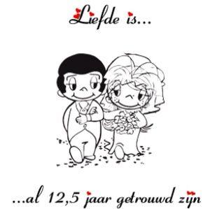 Liefde Isal 125 Jaar Getrouwd Zijn Love Is Comic