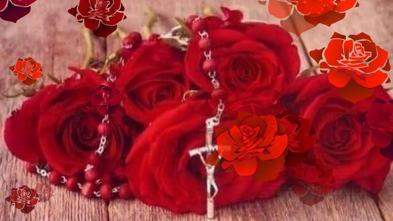 Ziemia Przykryje Me Cialo Piesn Pogrzebowa Plants Flowers Rose