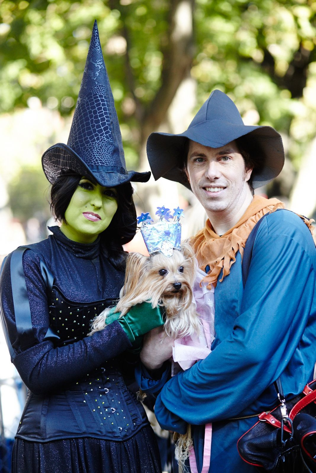 Dog halloween costumes pet holiday ideas pet halloween