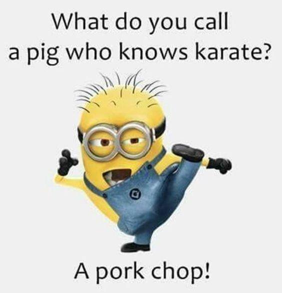 What do you call a pig who knows karate? A pork chop
