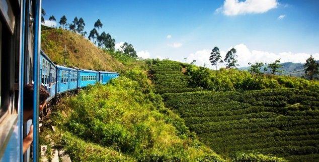 Entdecken Sie die Vielseitigkeit Sri Lankas