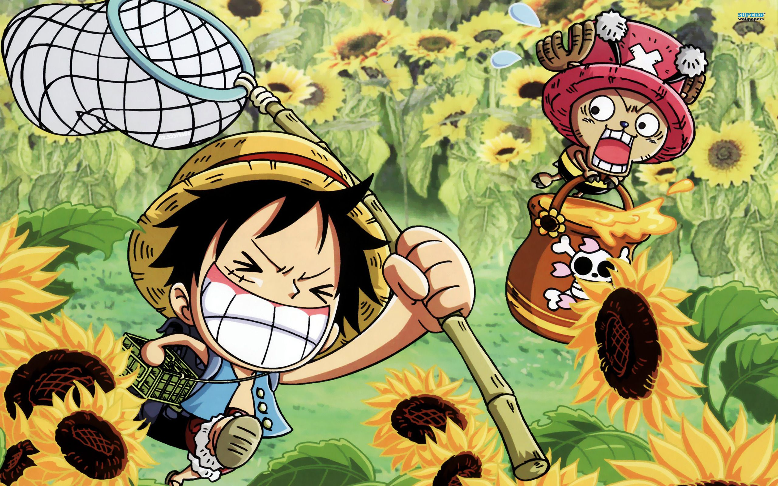 One piece background hd b t u pinterest hd - One piece wallpaper hd for android ...