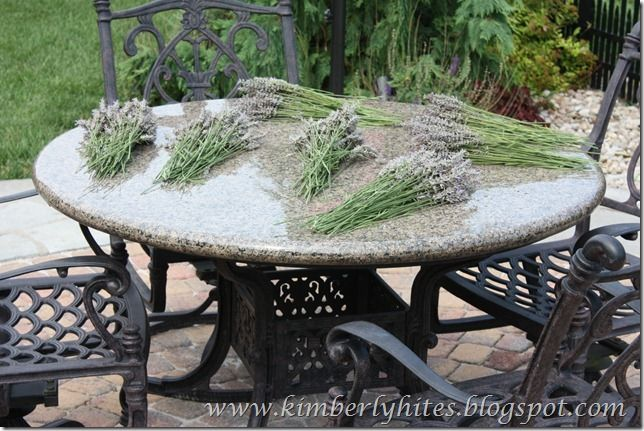 Drying Your Own Lavender