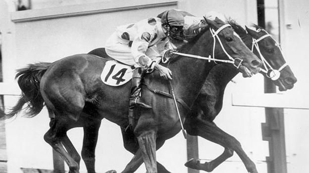 Gala Supreme was an Australian thoroughbred racehorse who won the 1973 Melbourne Cup.