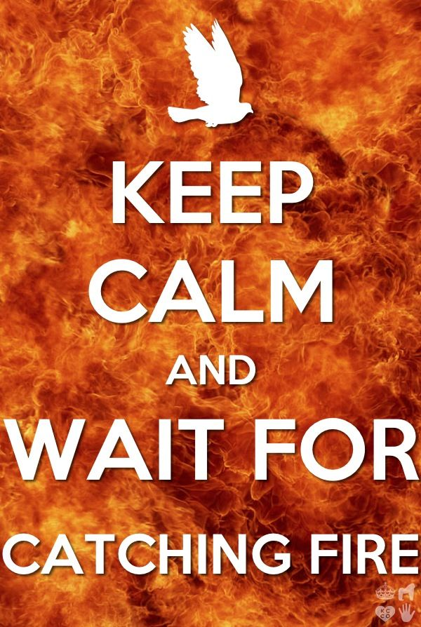 Keep calm and just wait for Catching Fire!!!!