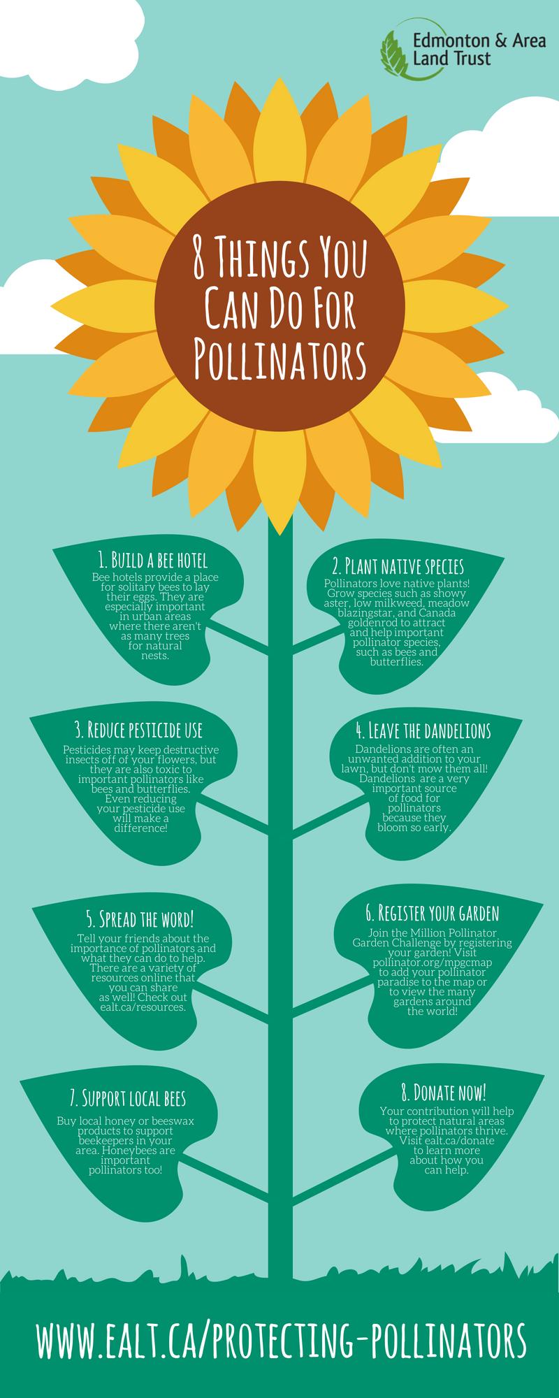 8 Ways To Help Pollinators Pollination Pollinator Garden Bee Hotel