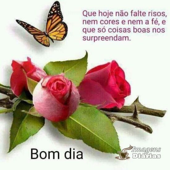 Bom Dia Borboletas Frases Facebook E Happy Birthday