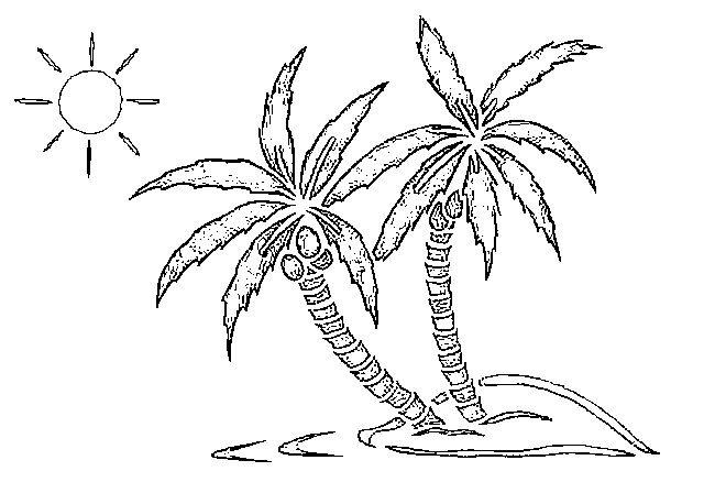 Palmiers | Coloring Pages 6 | Pinterest | Playa palmera, Palmeras y ...