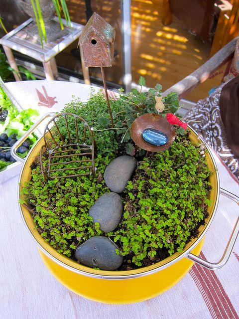 Making Miniature Fairy Gardens
