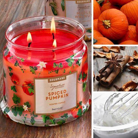 Chaude, epicée, gourmande et saisonnière ! Je l'adore ! https://goarinchristelle.partylite.fr/Shop/Product/2992