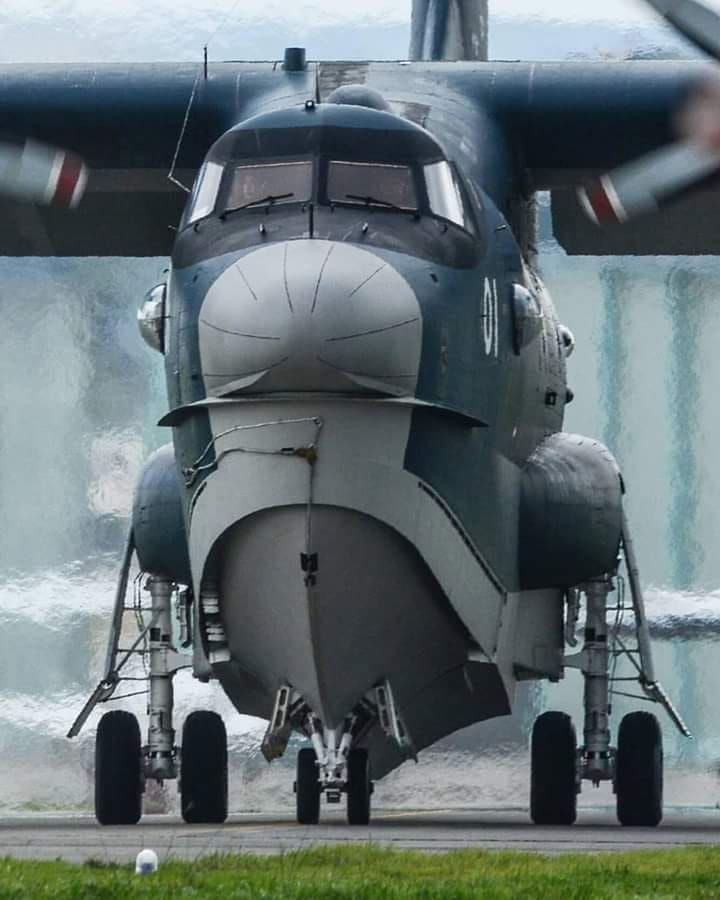 Amphibious Aircraft, Wwii Aircraft