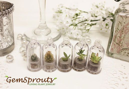 GemSprouts Make Great Wedding Reception Gifts