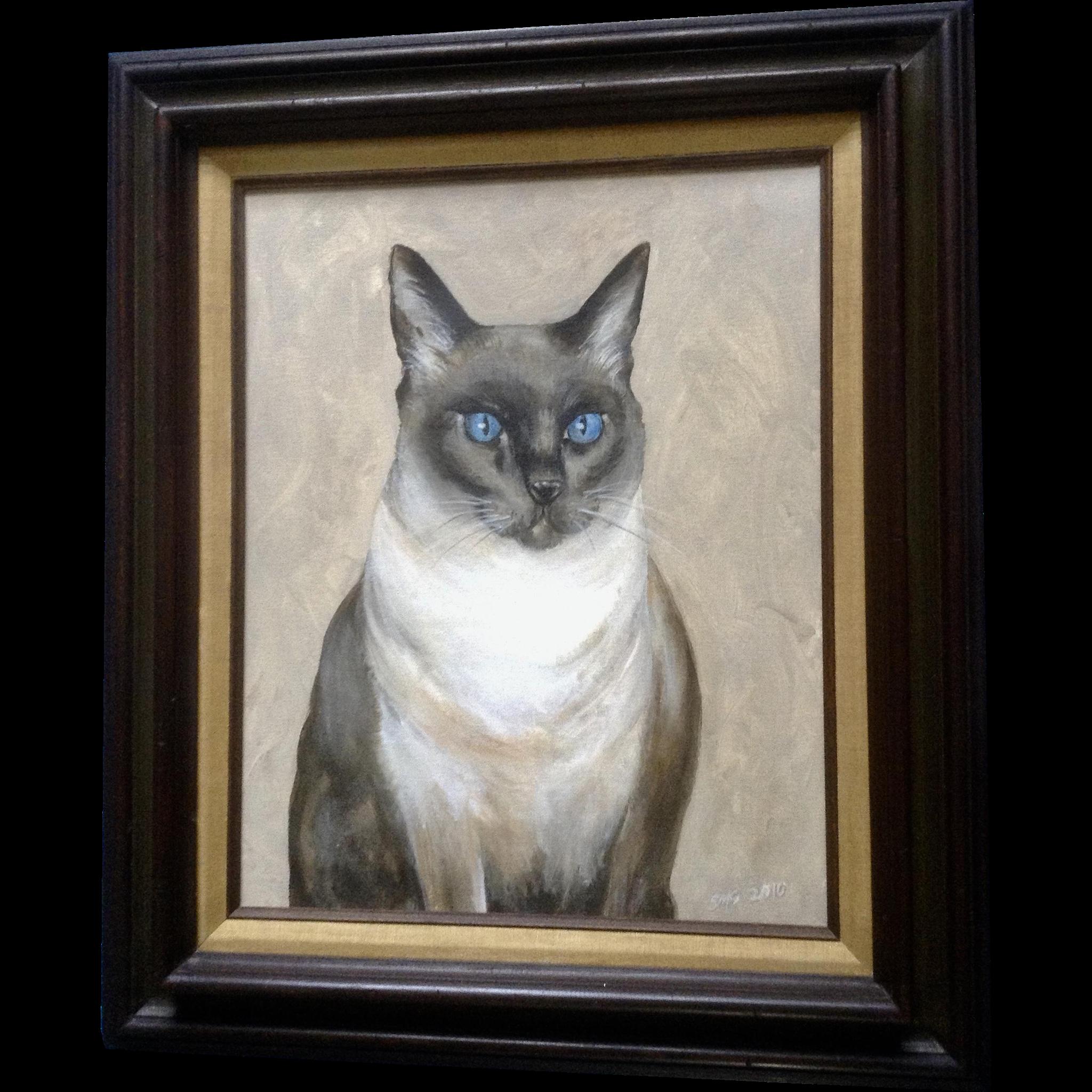 Scott M Soffa Blue Eyed Siamese Cat Portrait Luna Beautiful And