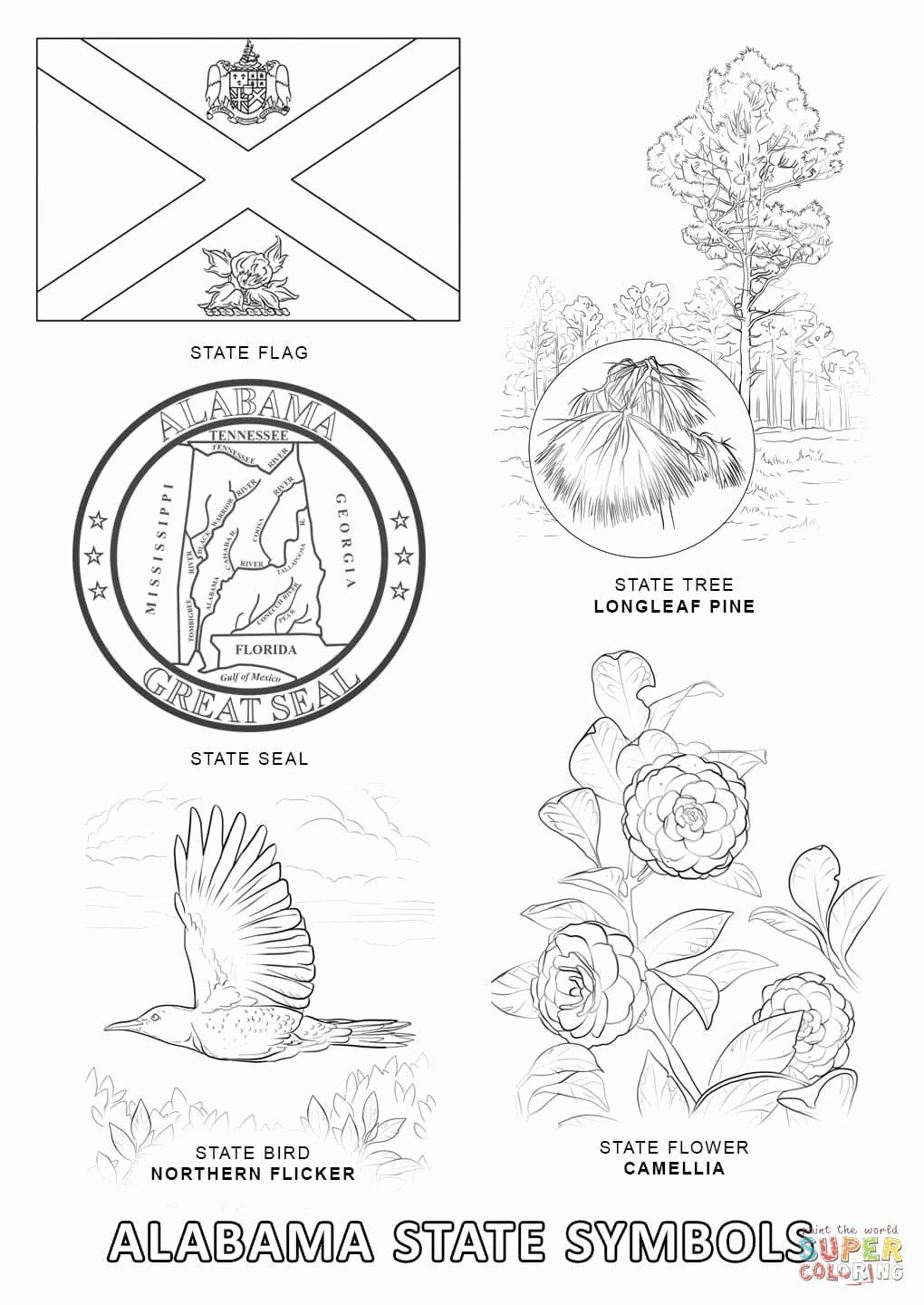 Texas State Flower Coloring Page Free Printable Coloring Pages