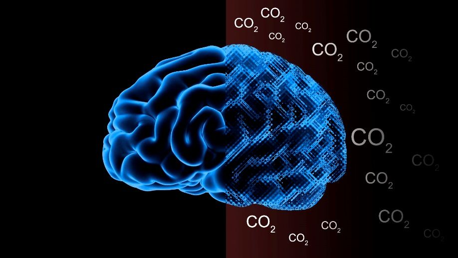 Image result for climate brain