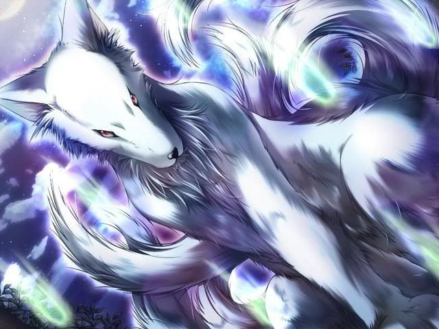 Anime Angel Wolf Darkwolfangel S Anime List Darkwolfangel S Manga List Wolf Wallpaper Kitsune Anime Wolf Awesome anime wolves wallpaper