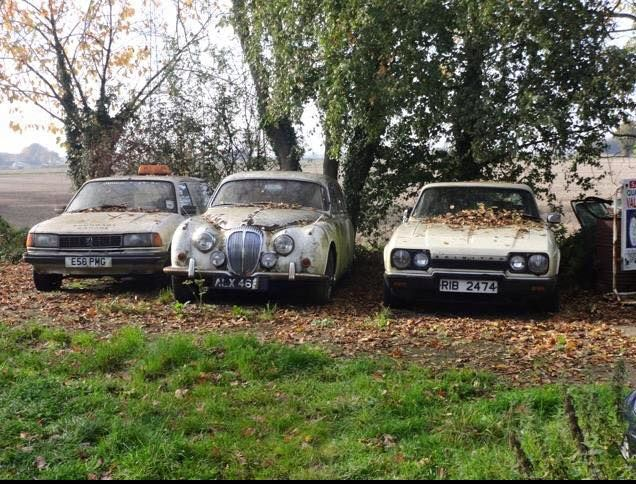 Peugeot, Daimler, and Reliant Scimiter
