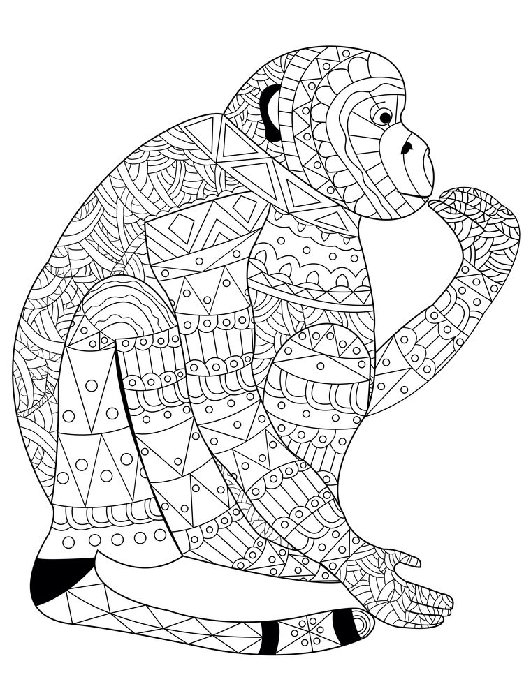 Coloring Pages | Cute Baby Monkey Coloring Page | 1000x750
