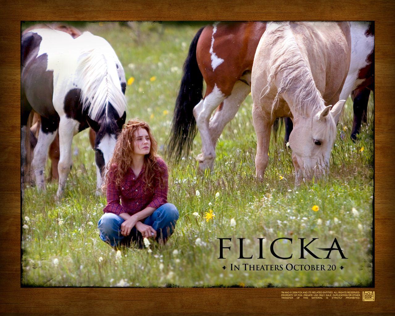 Popular Wallpaper Horse Flicka - 9de672abd1bc65e27c59f2a5a8c2162a  Graphic_434617.jpg