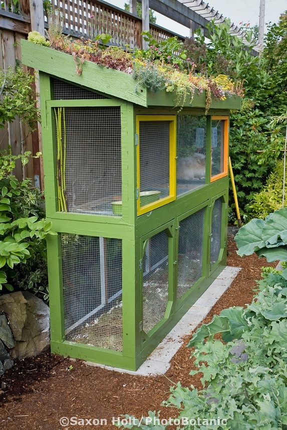 Rabbit hutch with greenroof in small backyard sustainable for Sustainable garden design