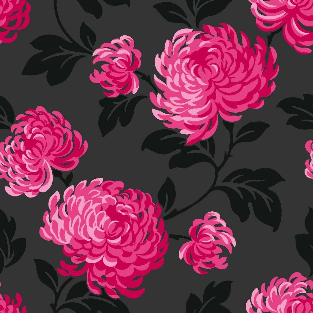 Black and white and pink bedrooms - Pink And Black Floral Wallpaper On Wallpaper Fine Decor Wallpaper Bloom Floral Pink And Black