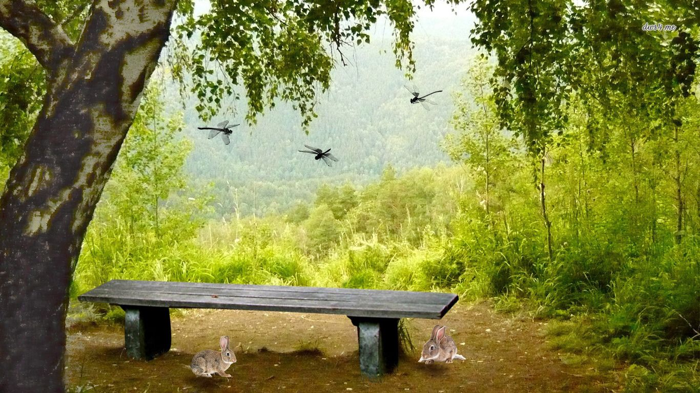 Dragonflies And Bunnies Around The Bench Hd Wallpaper
