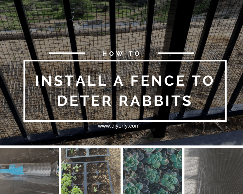 How to Keep Rabbits Out of your Yard with a Simple Fence ...