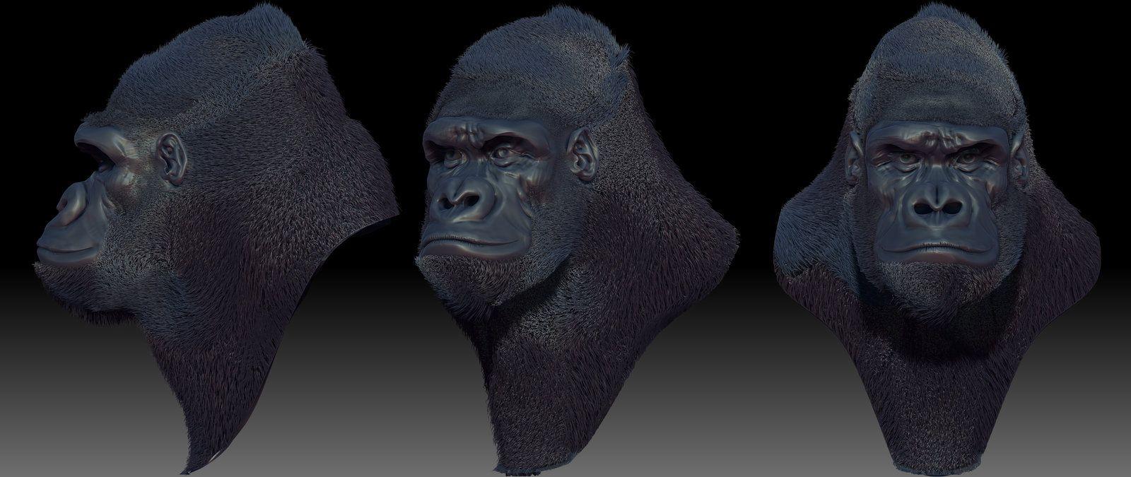 gorilla_speed_sculpt_by_gvdigitalsculptor-d62nn4a.jpg (1600×675 ...