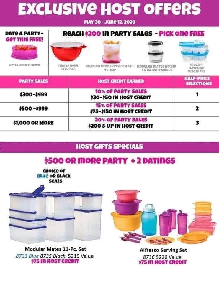 Tupperware Host Rewards Tupperware Round Ice Cube Trays No Cooking