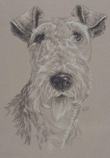 Kunstdruck Haustiere Zeichnung Airedale Terrier 009 Hunde Tiere,