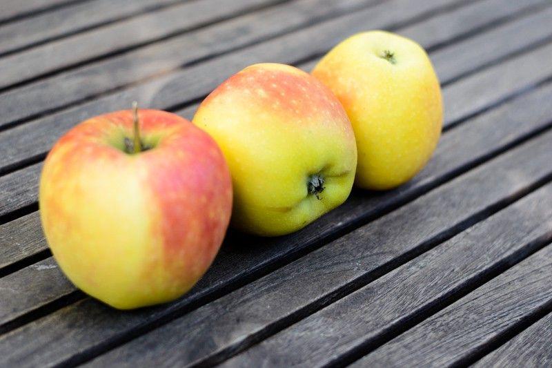 Geschmacklich deckt die Apfelsorte Kanzi ein sehr breites Spektrum ab und hat geschmacklich seinen Reiz. Ein großer Apfel für den breiten Massenmarkt!