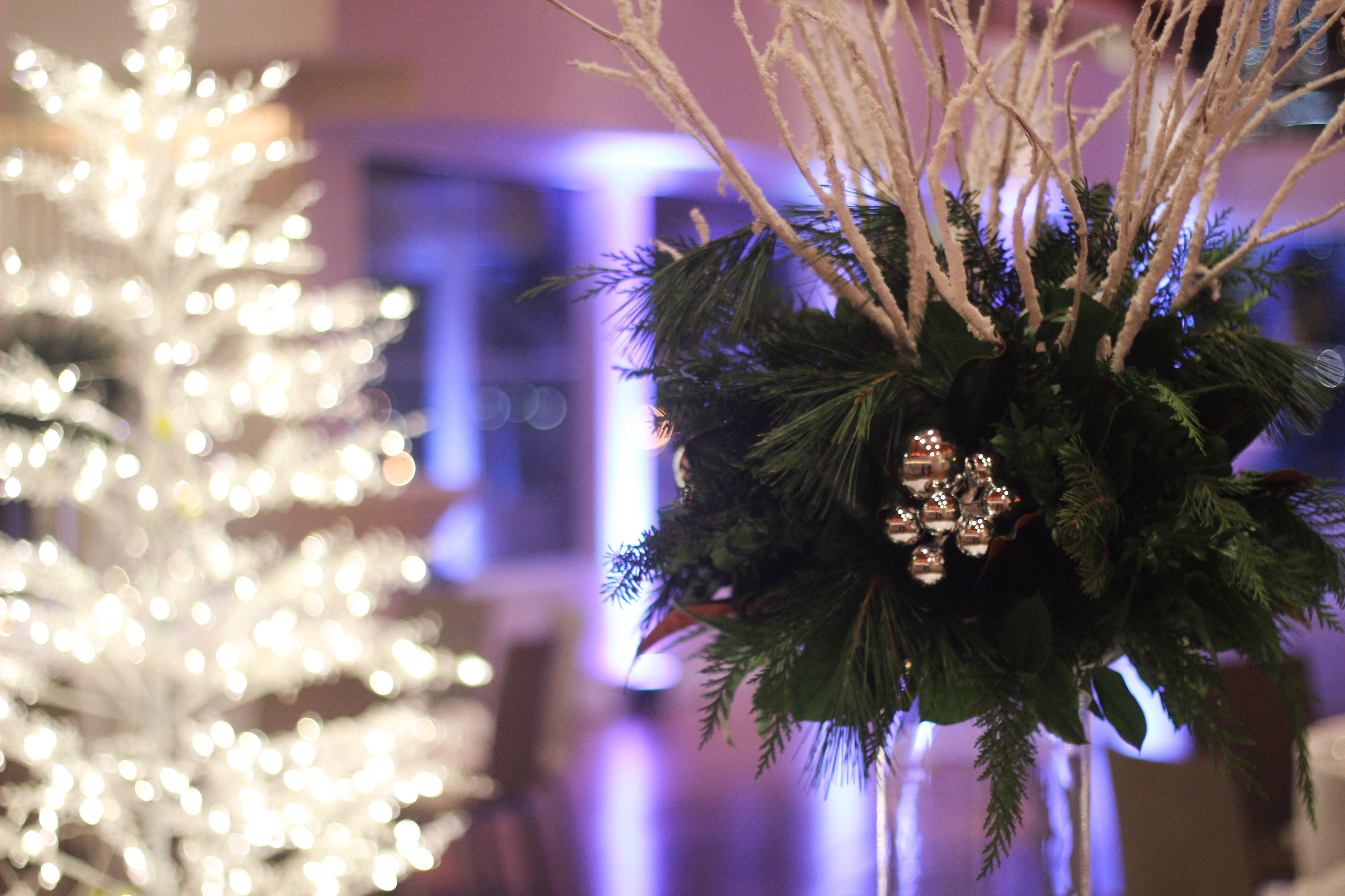 Holiday Greens Centerpiece - Thanks To Redwoodfloristcom