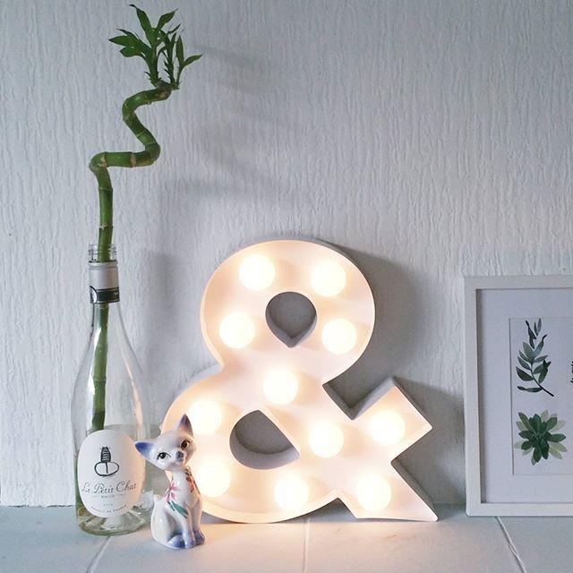 deze hippe lamp staat overal in huis leuk! #hemawonen #cactus, Deco ideeën