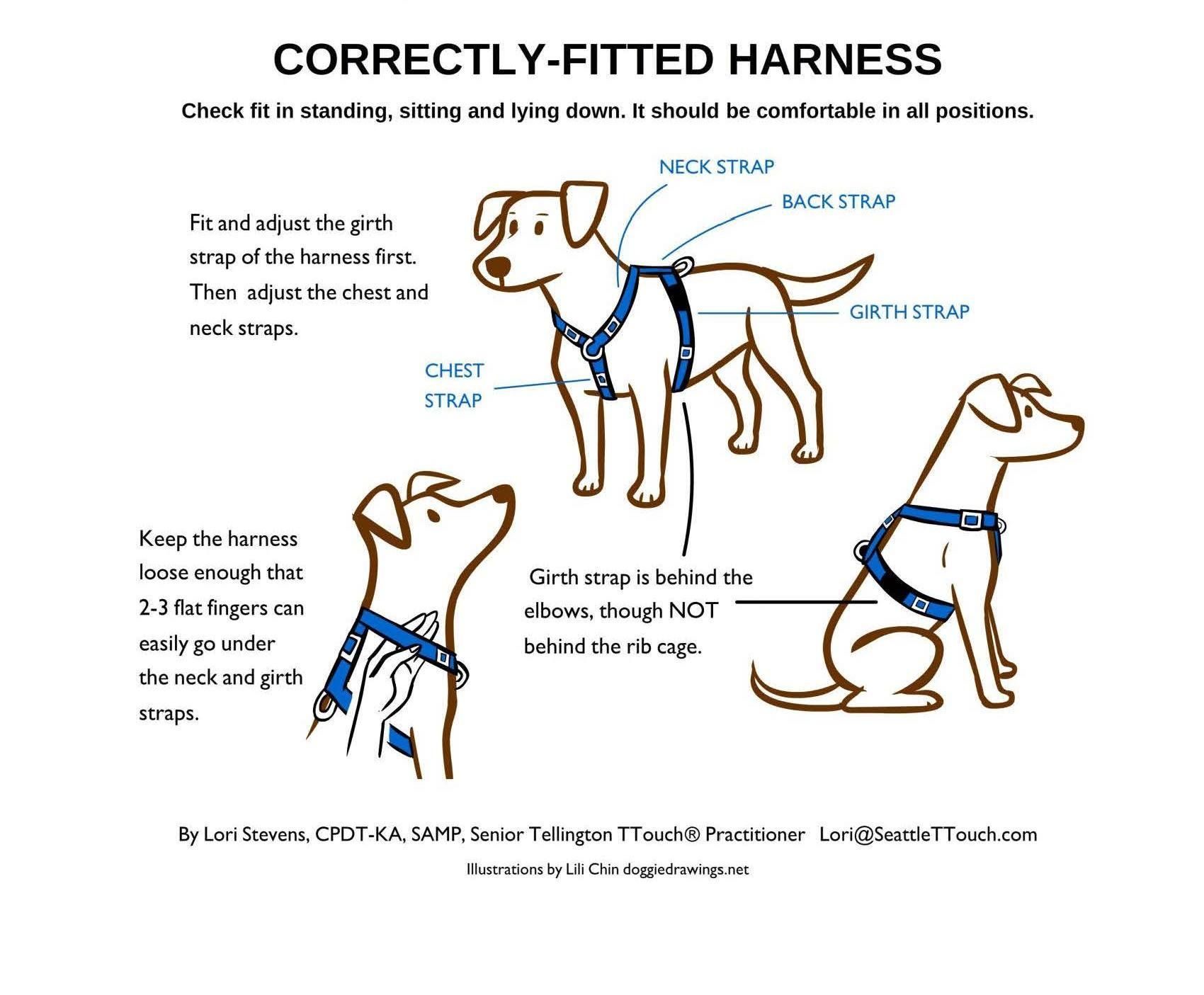 Pin By Pamela Wofford On Dog Supplies Dog Safety Dog Supplies