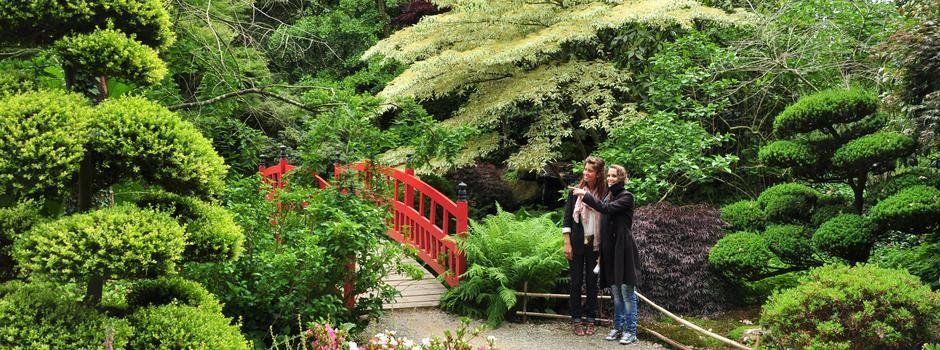 Parc Botanique De Haute Bretagne Parcs Et Jardins Parc Et