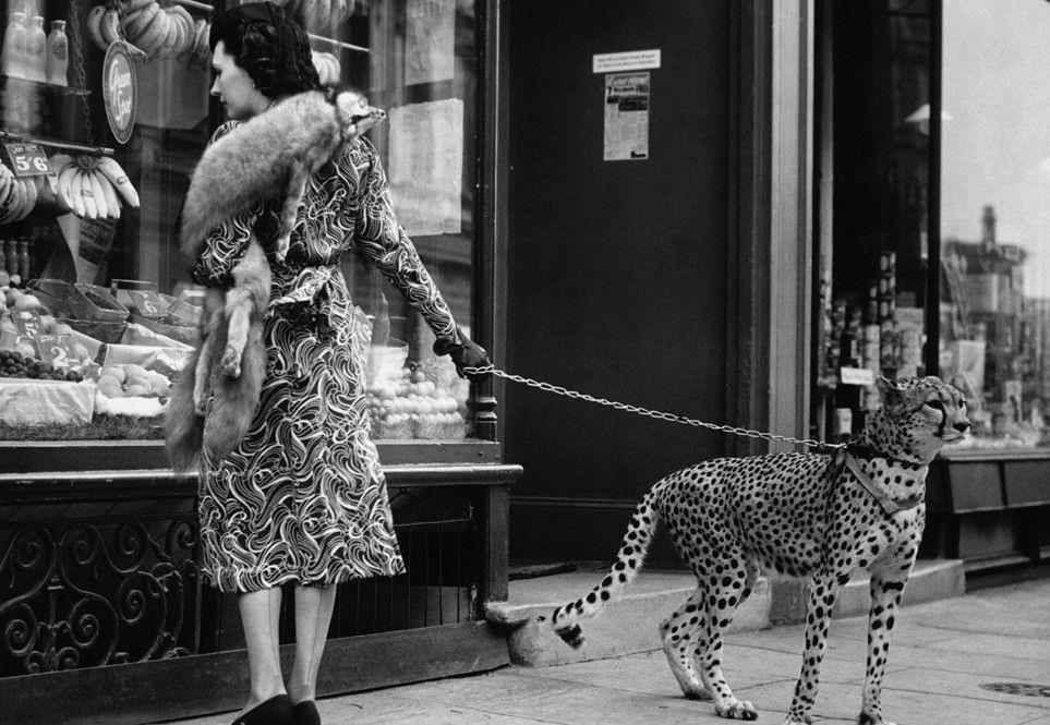 Menschen # Tiere