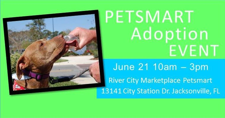 Join us June 21 for our monthly Petsmart Adoption event