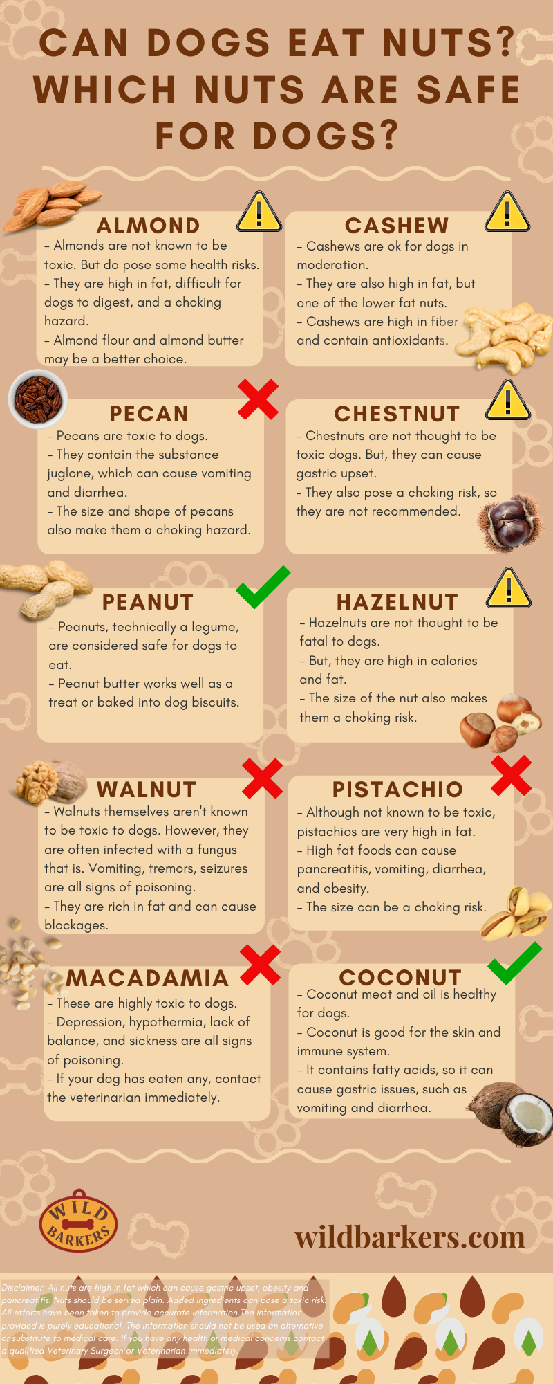 Can Dogs Eat Nuts? Which Nuts Are Safe