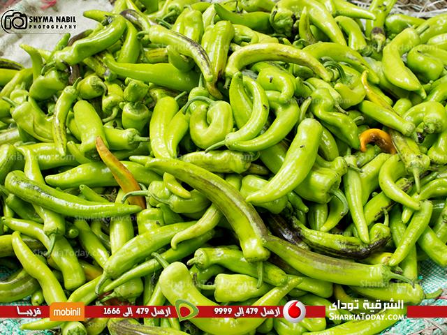 Pin By الشرقية توداي On شم النسيم بالشرقية Green Beans Vegetables Food
