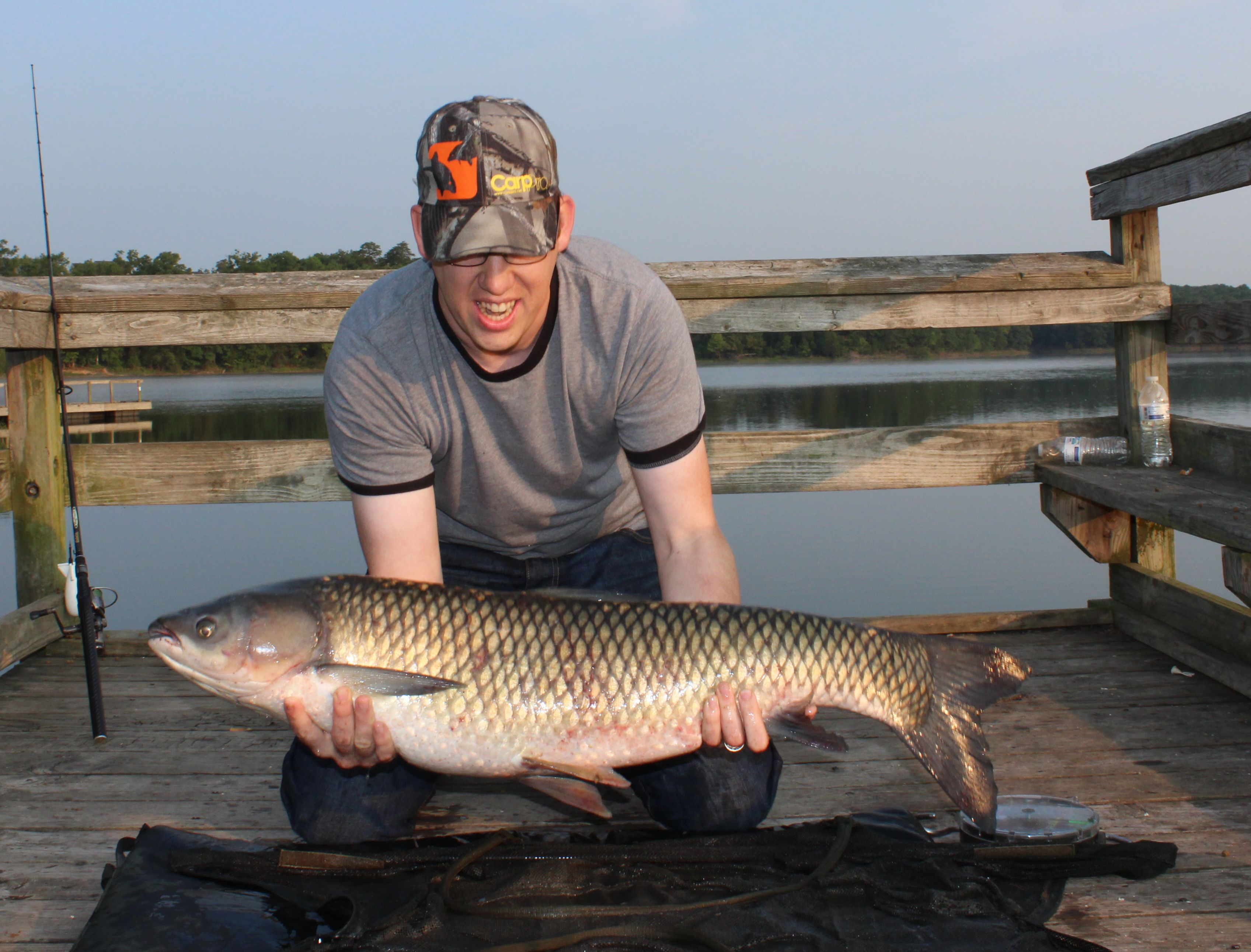 Another Great 29 Lb Grass Carp In Northern Va Just Shy Of The Elusive 30 Lb Mark Caught This Grassie Chumming With Floating Fish Pellets I Put A Couple Of Th